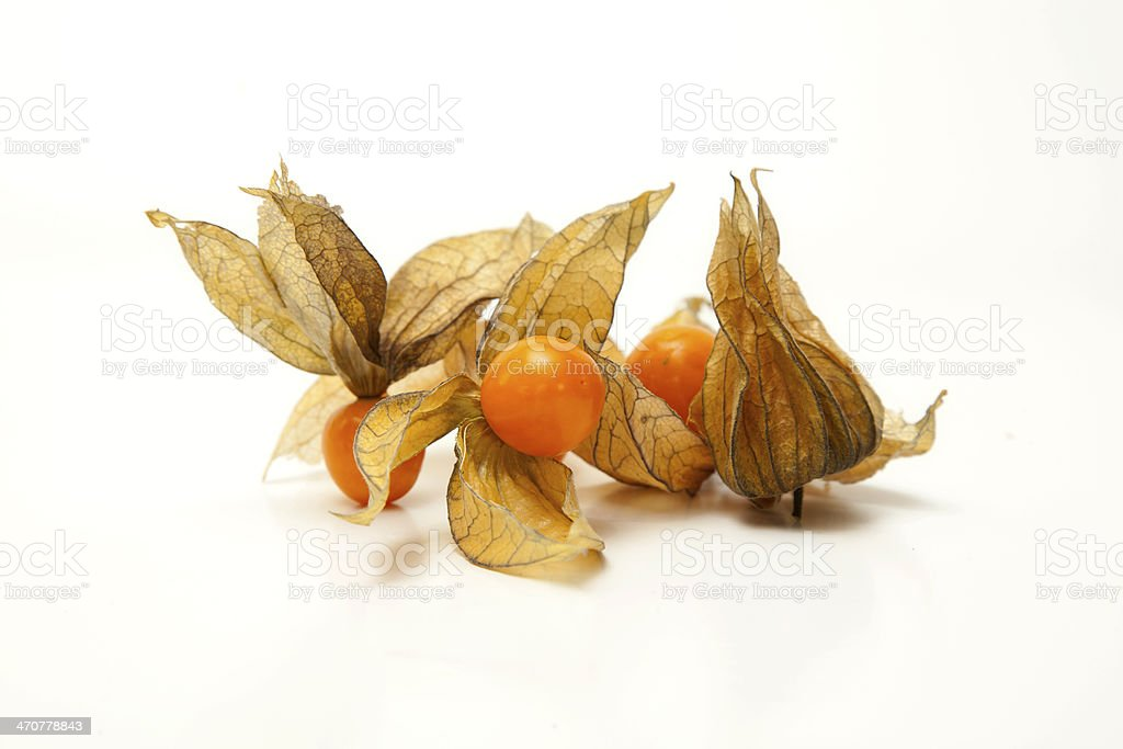 Physalis fruit or Cape gooseberry stock photo