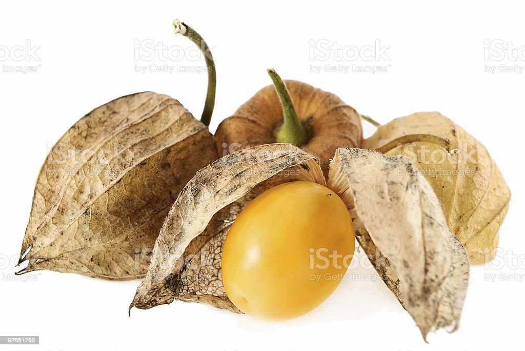 Physalis Fruit royalty-free stock photo
