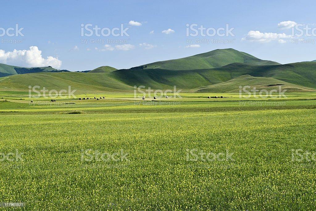 Piano Grande di Castelluccio (Umbria, Italy) - Landscape royalty-free stock photo