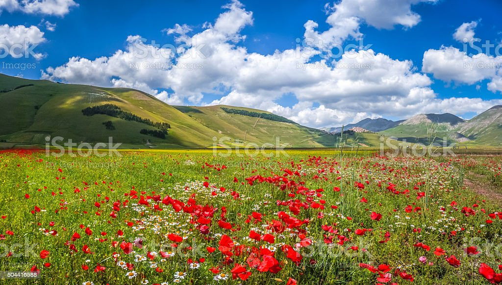 Piano Grande summer landscape, Umbria, Italy stock photo