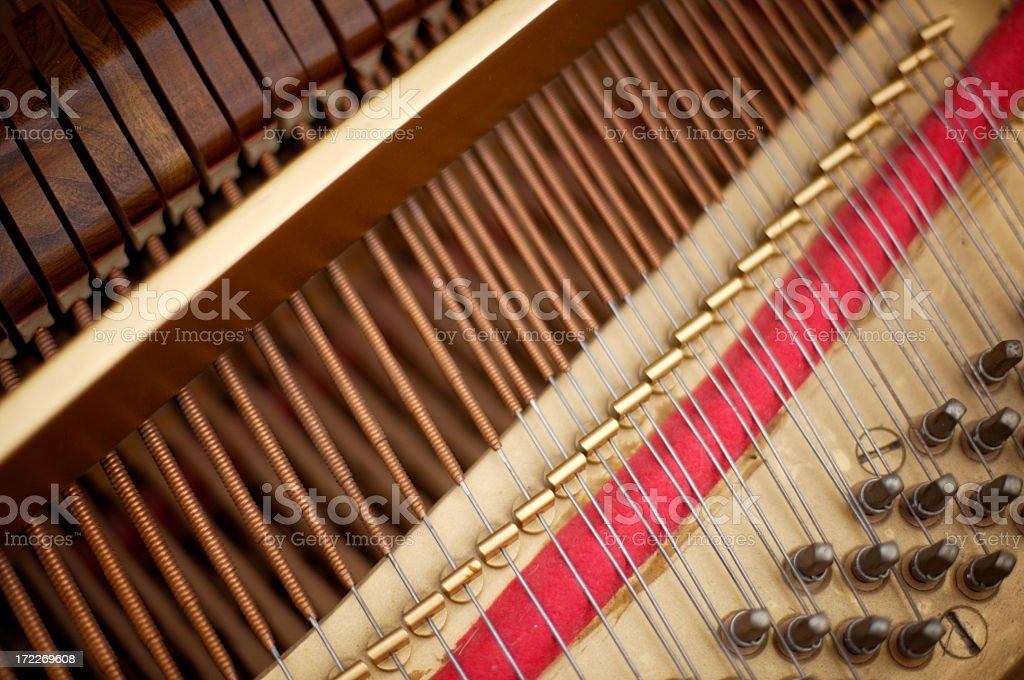 Piano Guts royalty-free stock photo