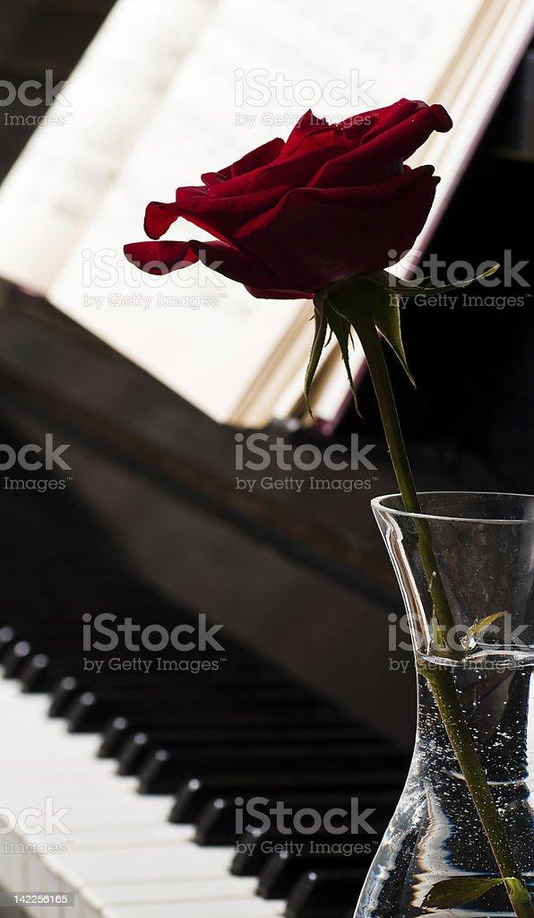 piano keyboard and rose royalty-free stock photo