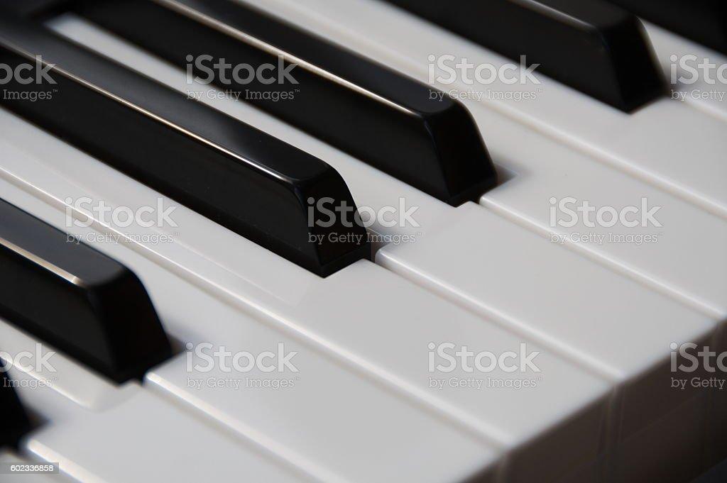 Piano Keys Close Up stock photo