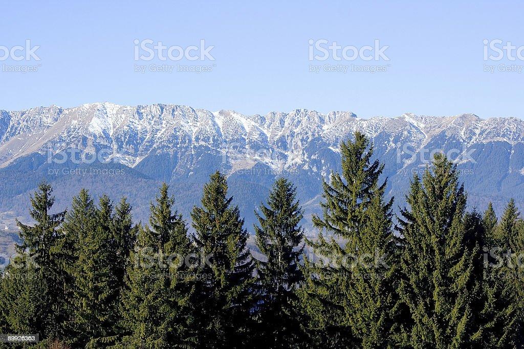 Piatra Craiului royalty-free stock photo