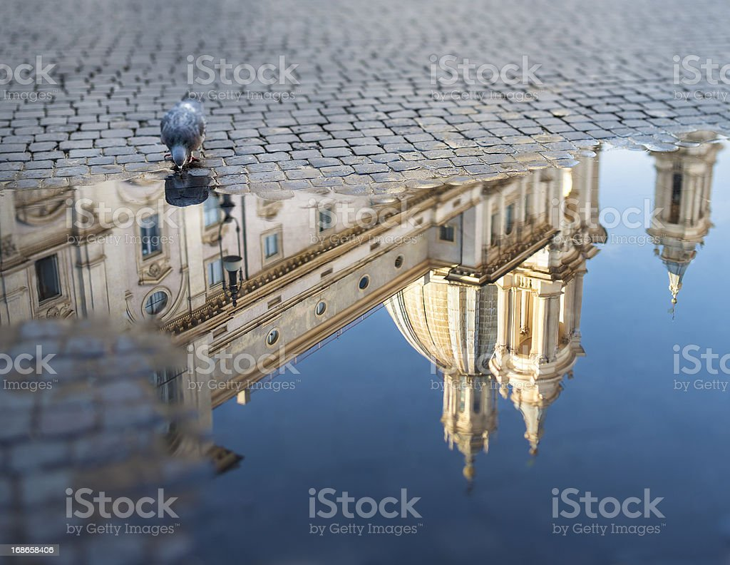 Piazza Navona with puddle and pigeon, Rome Italy stock photo