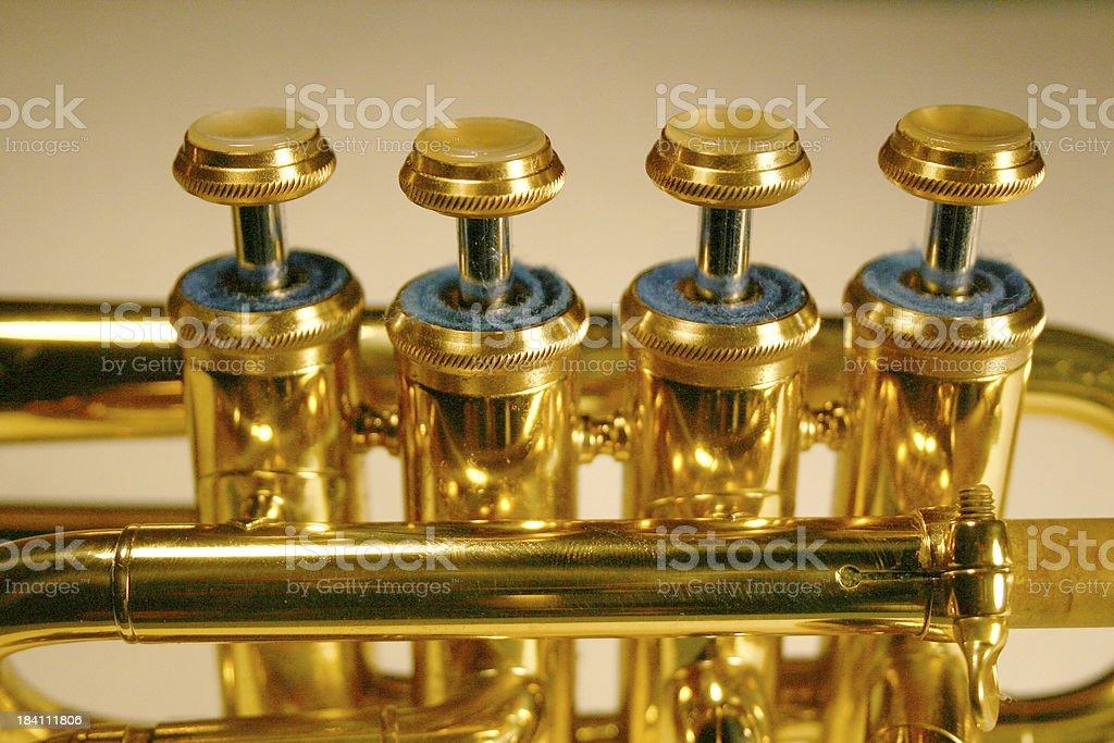 Piccolo 2 royalty-free stock photo
