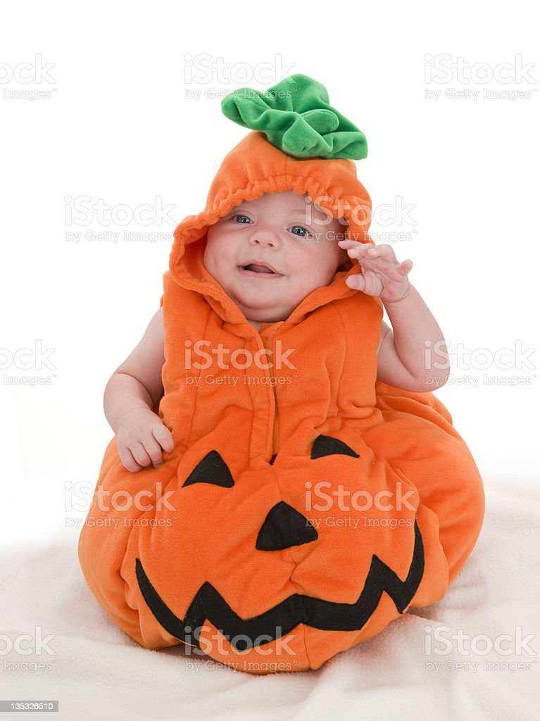 Pick of the Pumpkin Patch stock photo