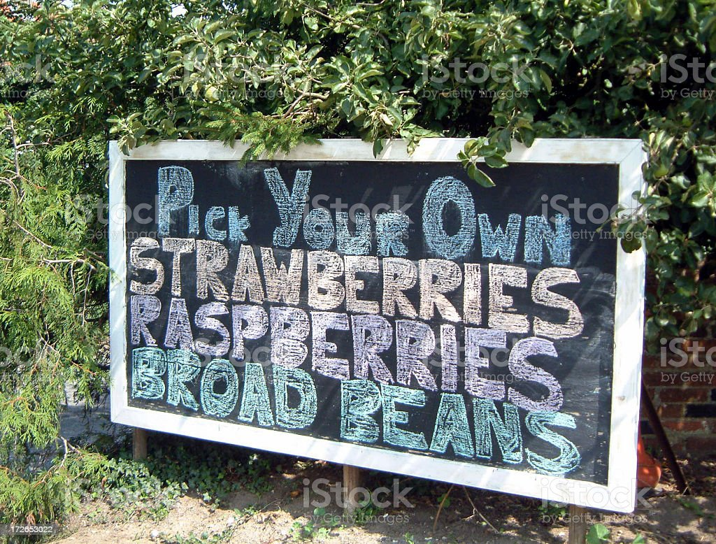 Pick Your Own Strawberries Sign Farm royalty-free stock photo