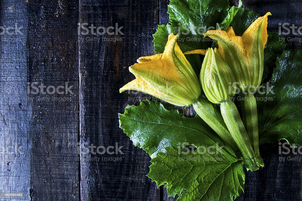 Picked From The Garden, Zucchini Flowers stock photo