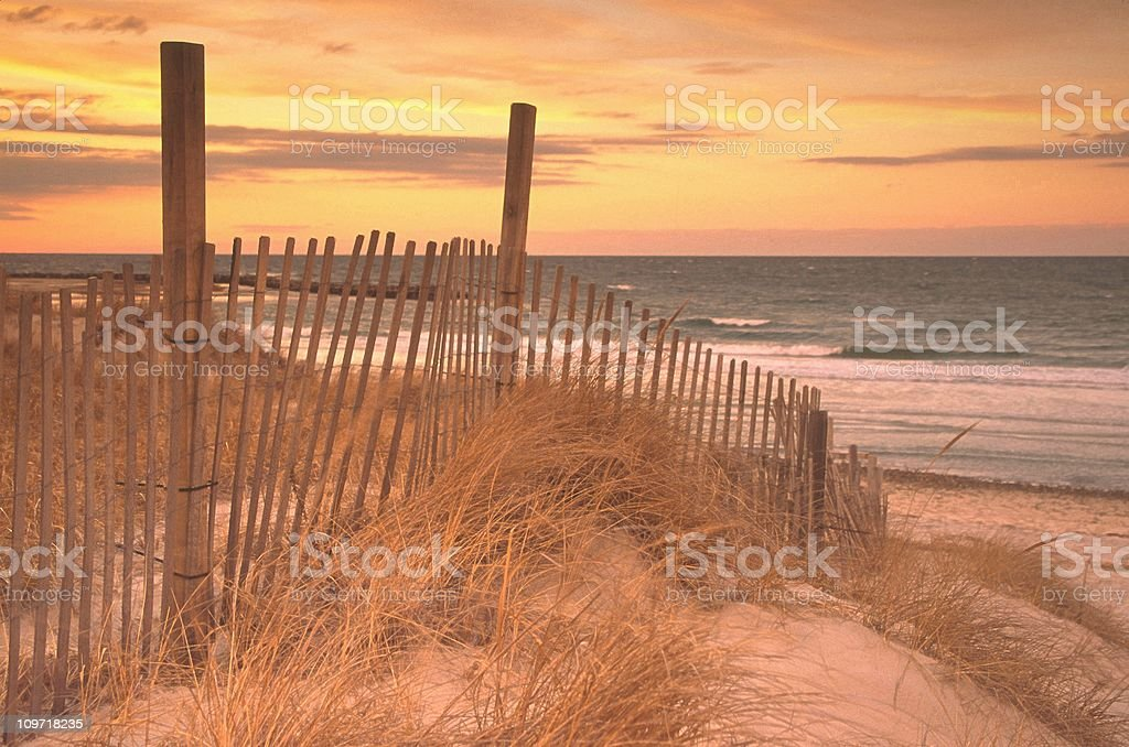 Picket Fence Along Sand Dune in Grass at Beach stock photo