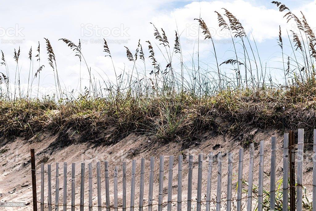 Pickett Fence with Beach Grass and Dunes at Sandbridge stock photo