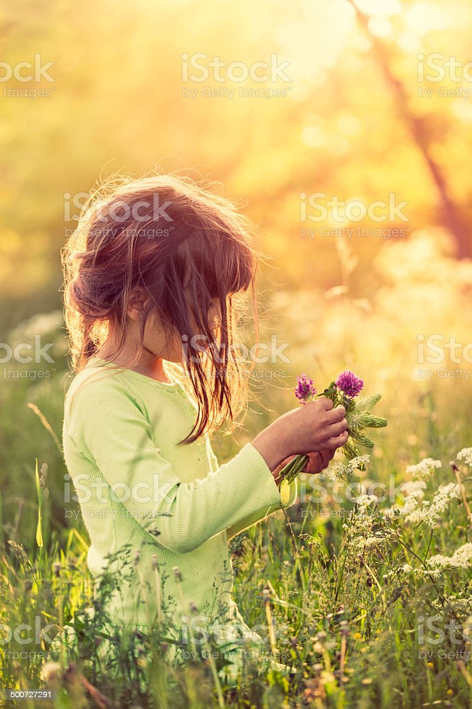 Picking flowers stock photo