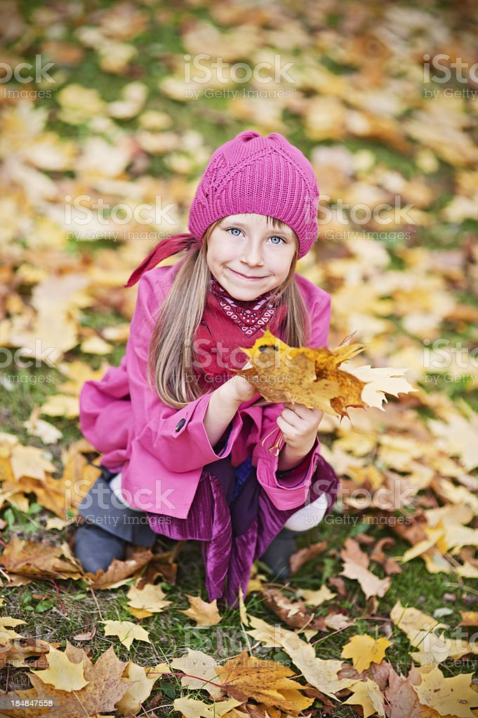 Picking up autumn leaves royalty-free stock photo