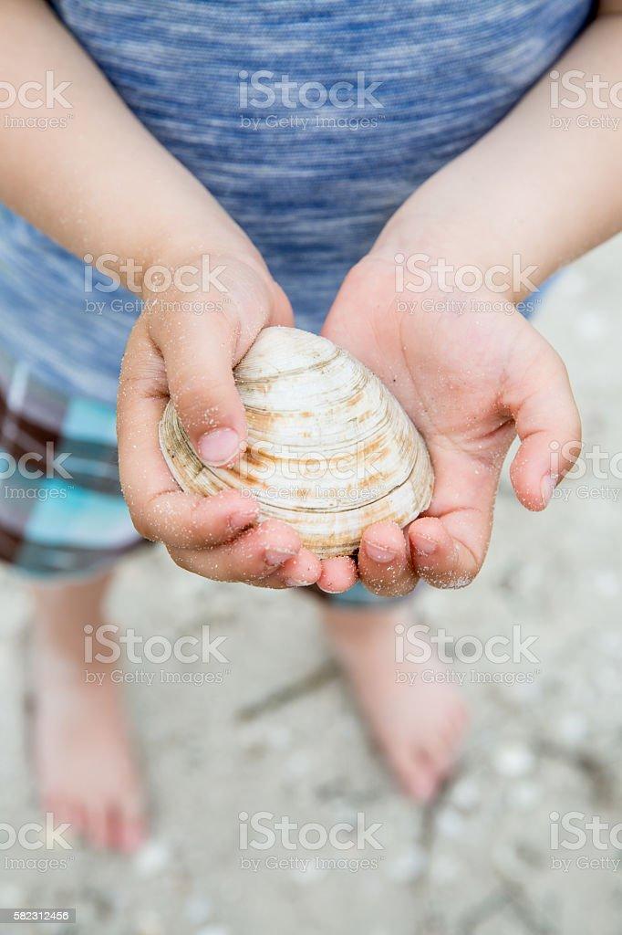 Picking Up seashells stock photo