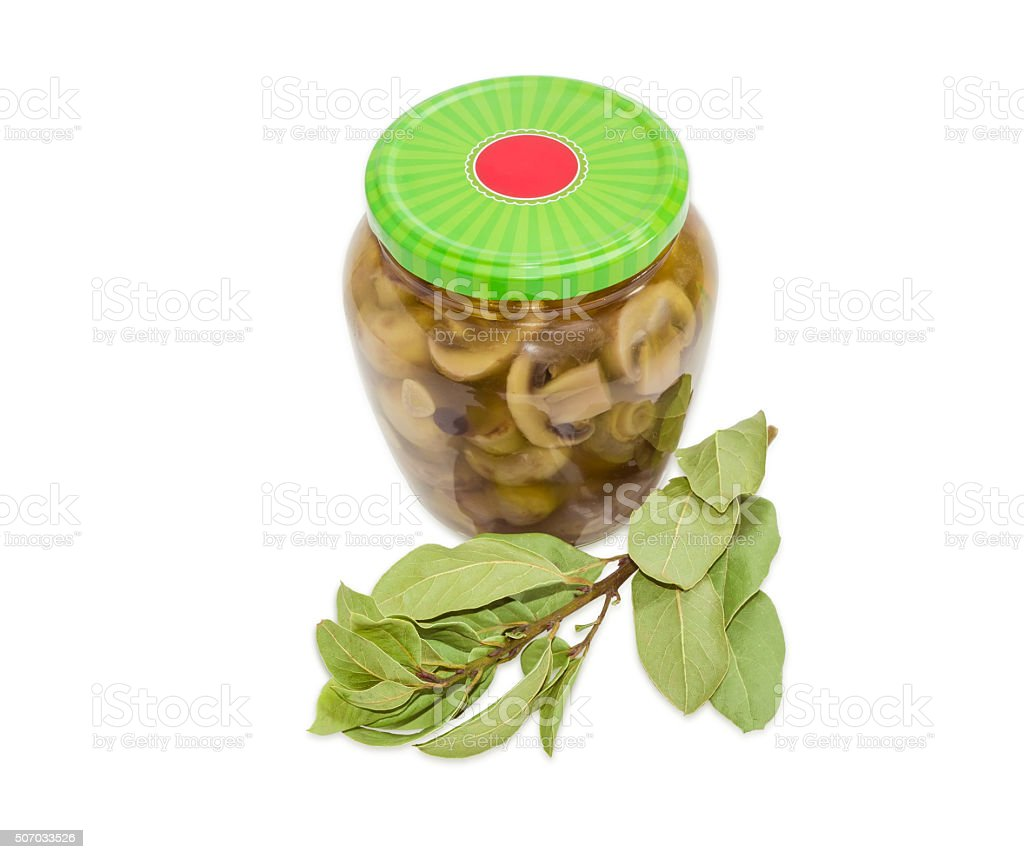 Pickled mushrooms in glass jar and branch of bay laurel stock photo