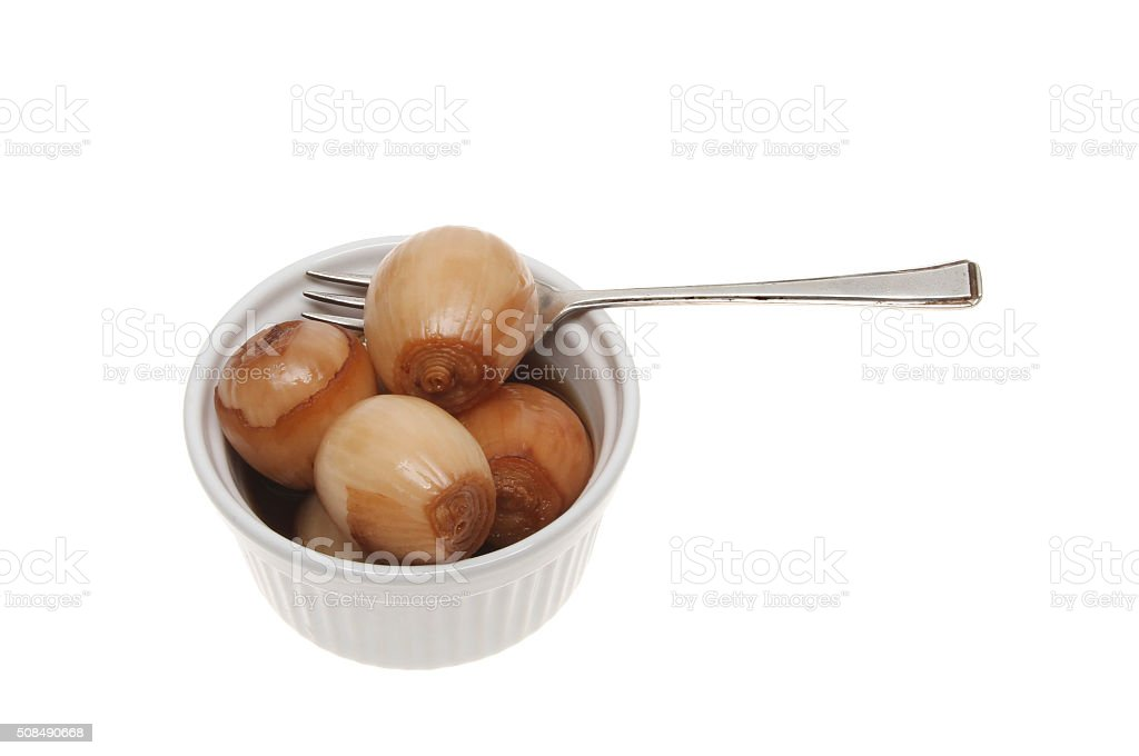 Pickled onions stock photo