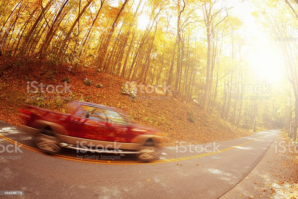 Pickup driving in the forest royalty-free stock photo