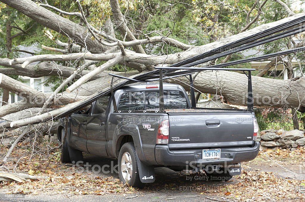 Pickup truck crushed by tree during Hurricane Sandy stock photo
