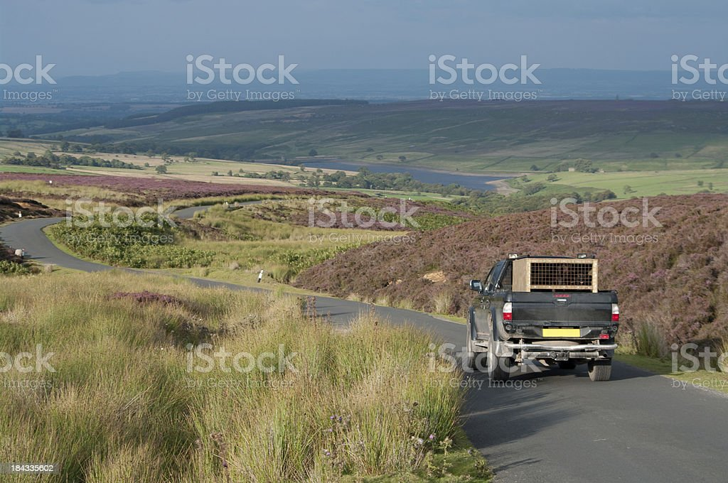 Pickup truck heads through Yorkshire Dales National Park stock photo
