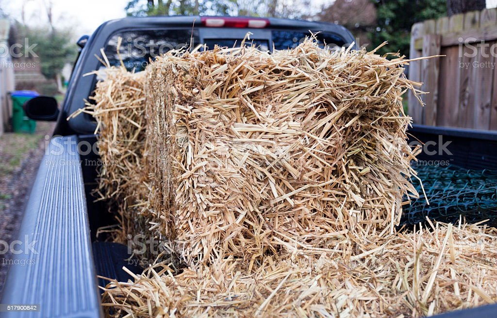 Pickup Truck with Bales of Straw stock photo