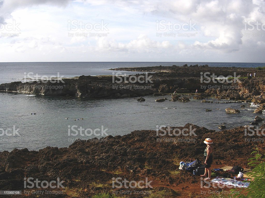 Picnic at Shark's Cove stock photo