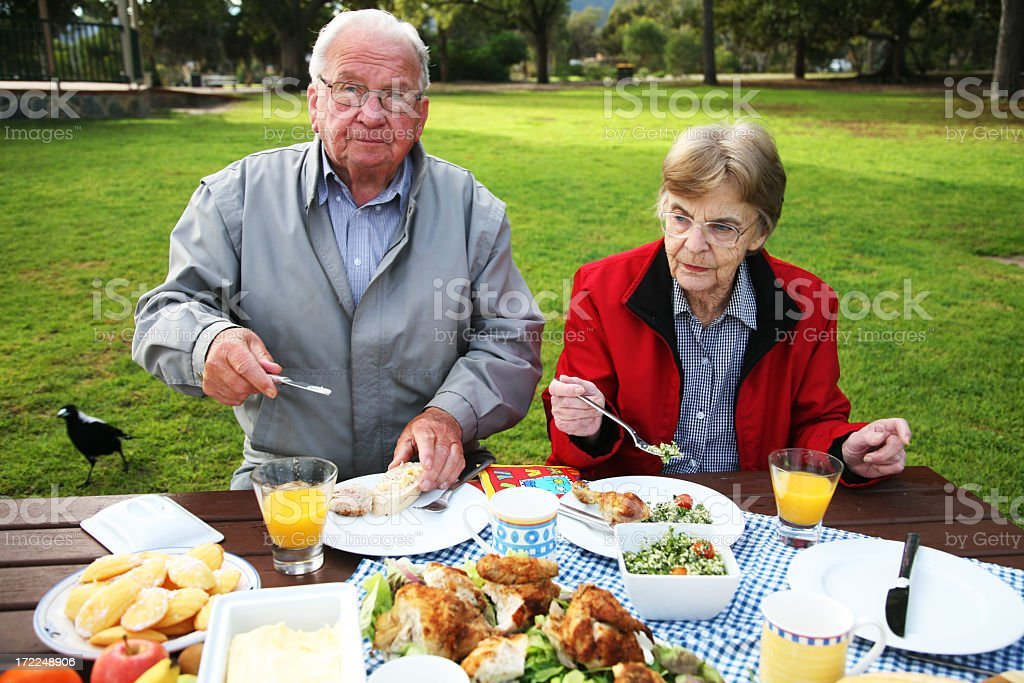 Picnic at the park royalty-free stock photo