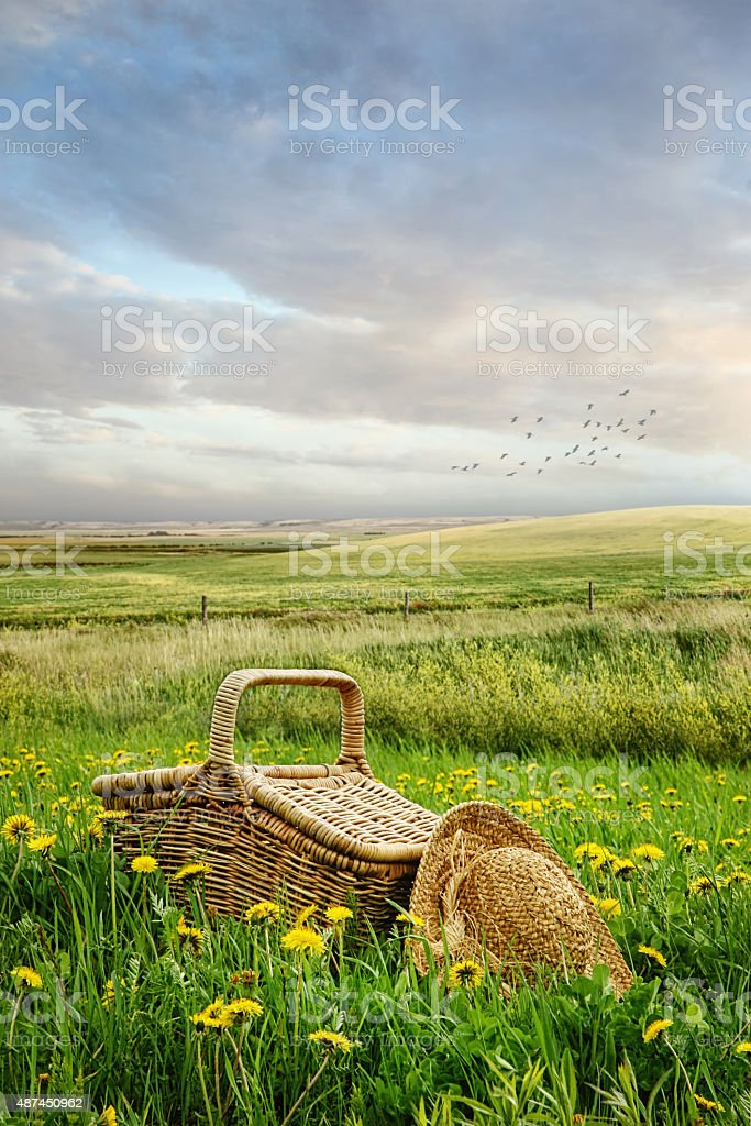 Picnic basket and hat in the tall grass stock photo