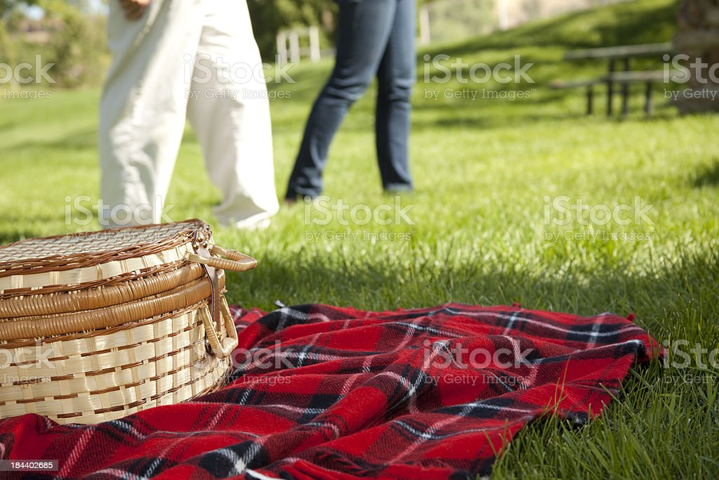Picnic basket on red plaid blanket in park. stock photo