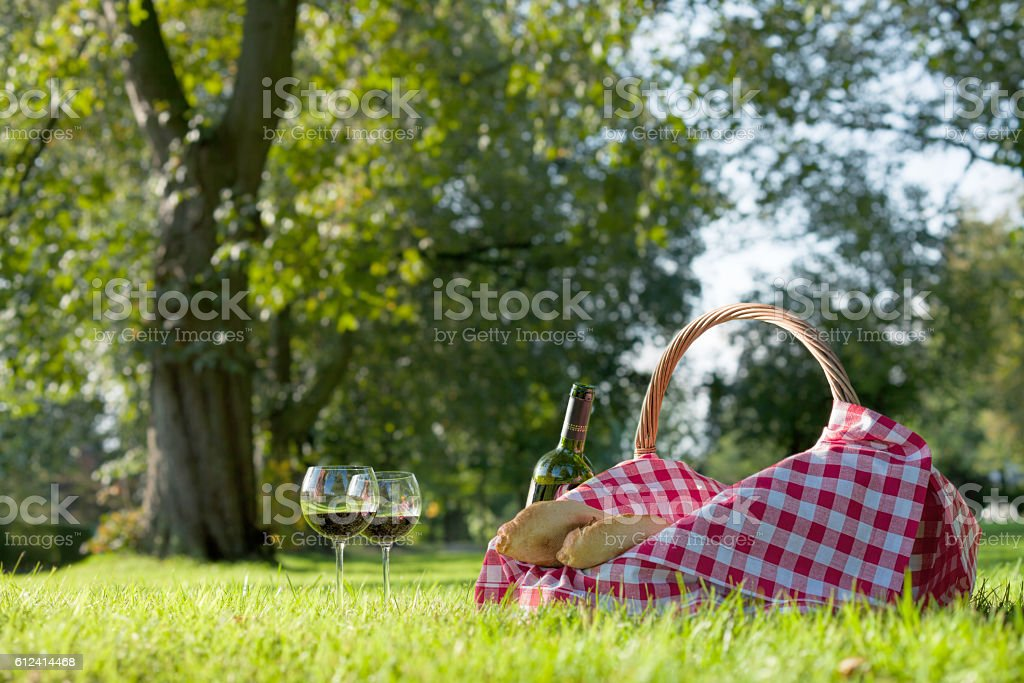 Picnic Basket with baguettes and glasses of wine on grass stock photo