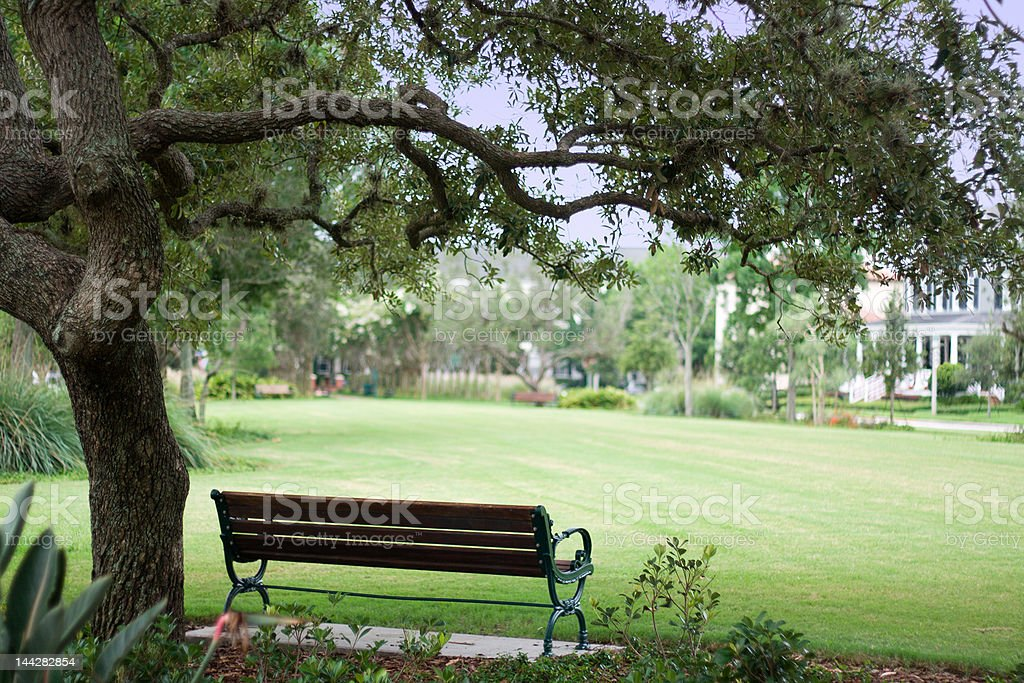 Picnic Bench in the Park royalty-free stock photo