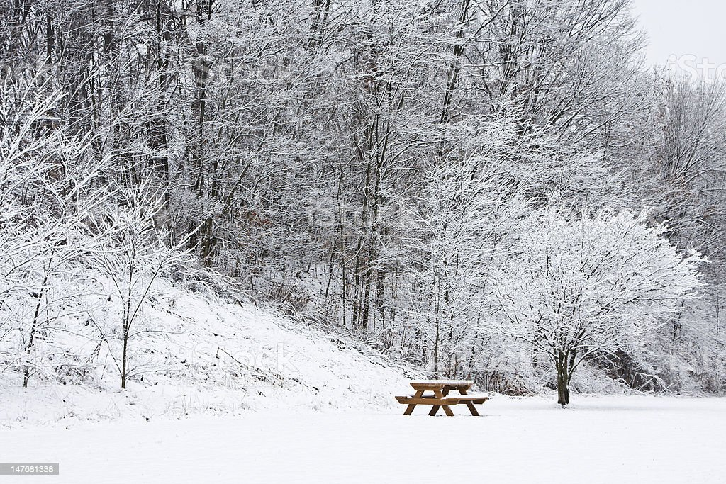 Picnic Bench Under Snow Covered tree royalty-free stock photo