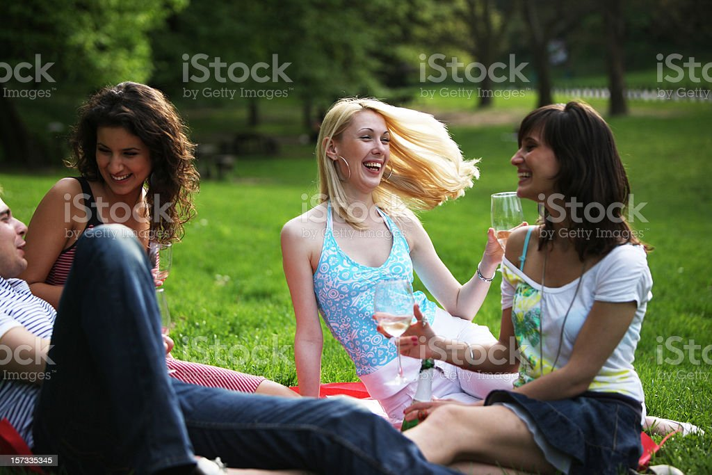 Picnic fun royalty-free stock photo