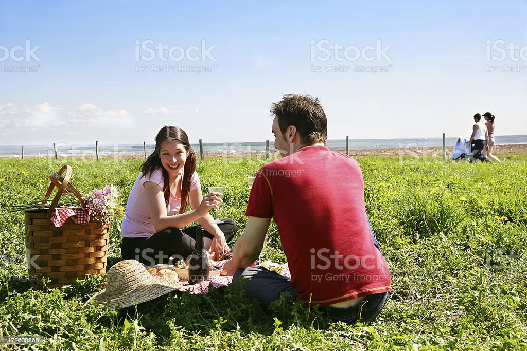 Picnic in a meadow royalty-free stock photo