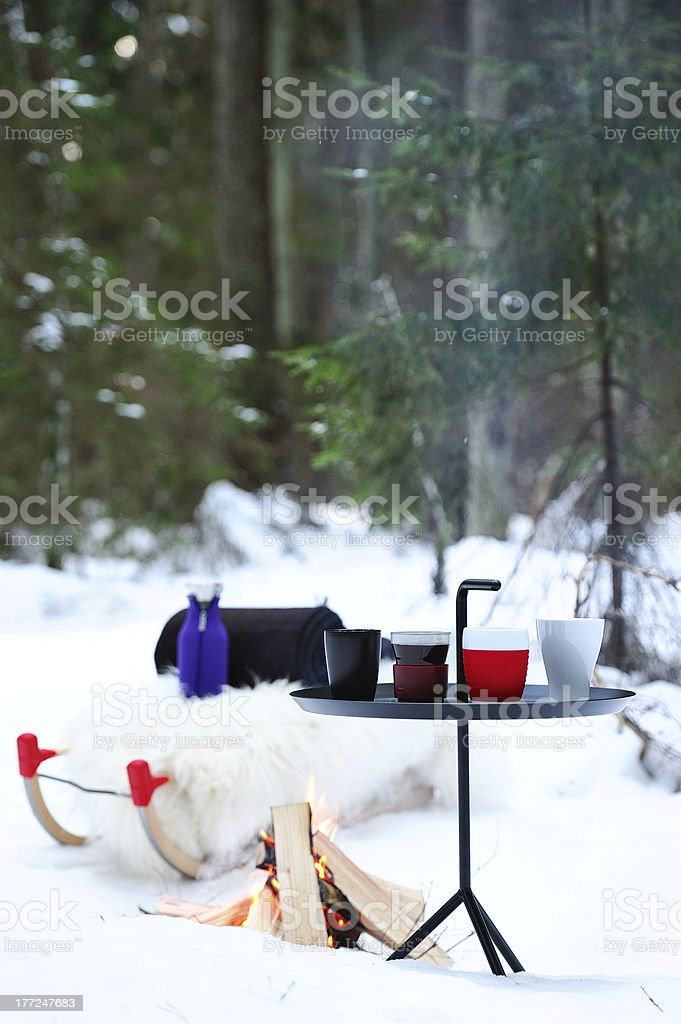 Picnic in the winter forest. Cups, bonfire, sled and rug. stock photo
