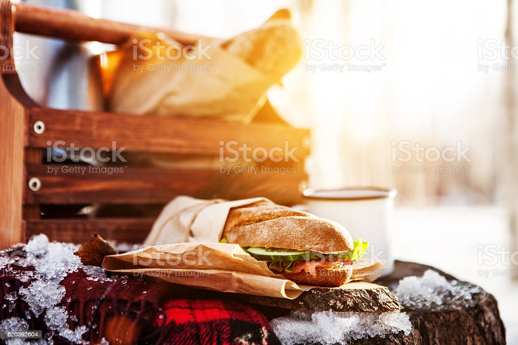 Picnic in the winter stock photo