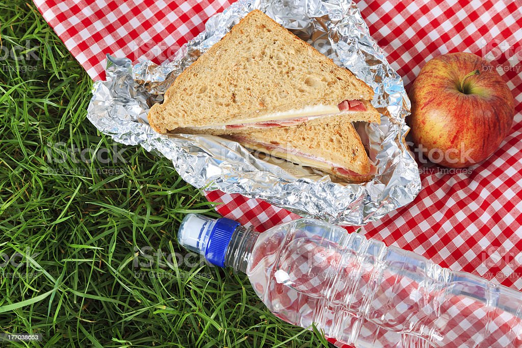 Picnic lunch royalty-free stock photo