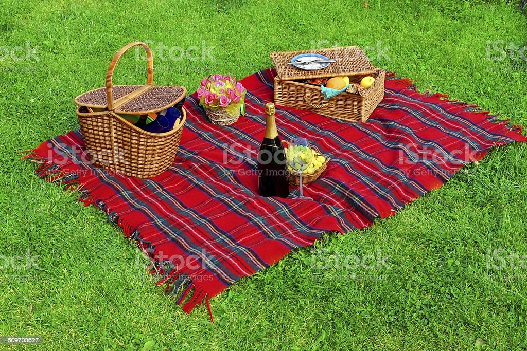 Picnic on the Lawn stock photo
