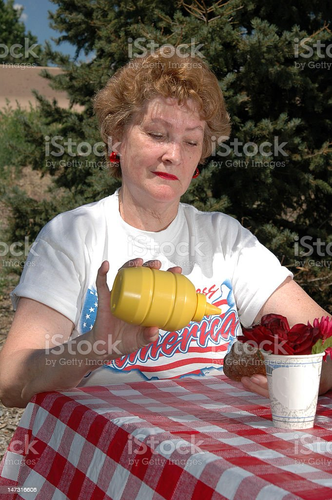Picnic on the Road royalty-free stock photo