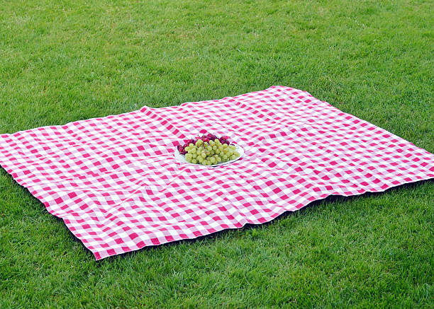 Picnic blanket pictures images and stock photos istock for Picnic blanket coloring page