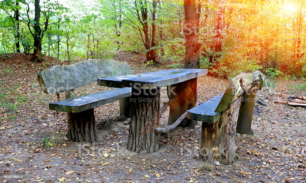 picnic site in autumn forest stock photo