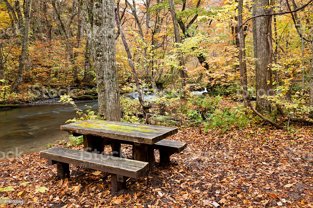 Picnic Table and Ground Covered in Autumn Leaves stock photo