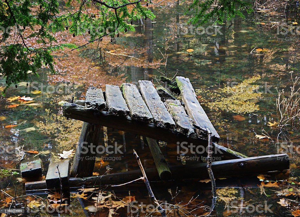 Picnic Table Broken Rotting Autumn Pond royalty-free stock photo