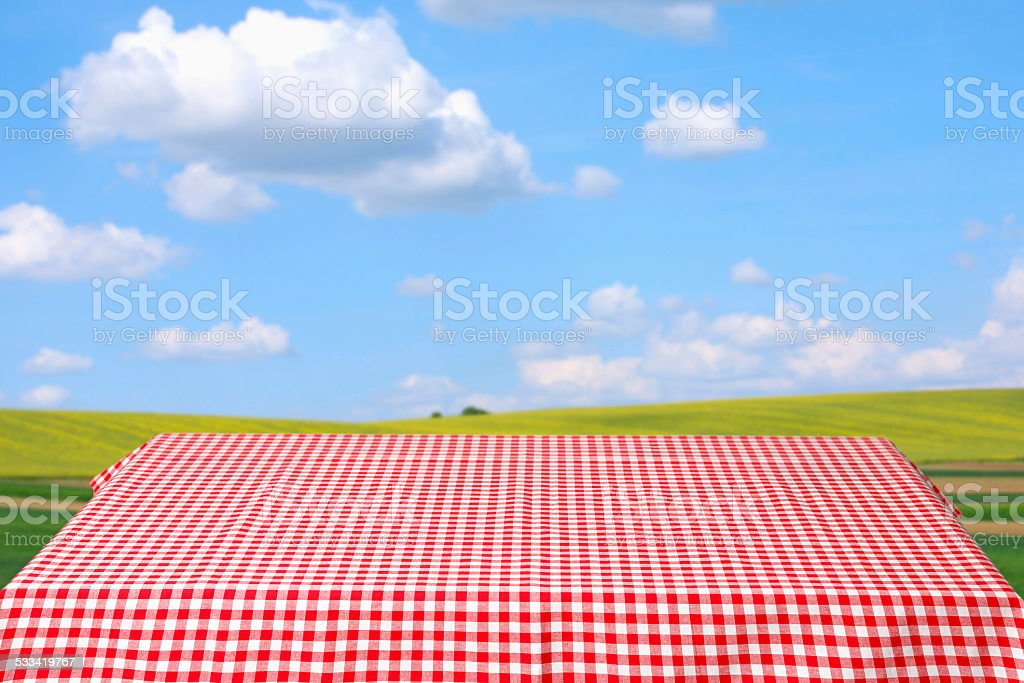 Picnic table covered with red and white checkered tablecloth  Spring stock photo