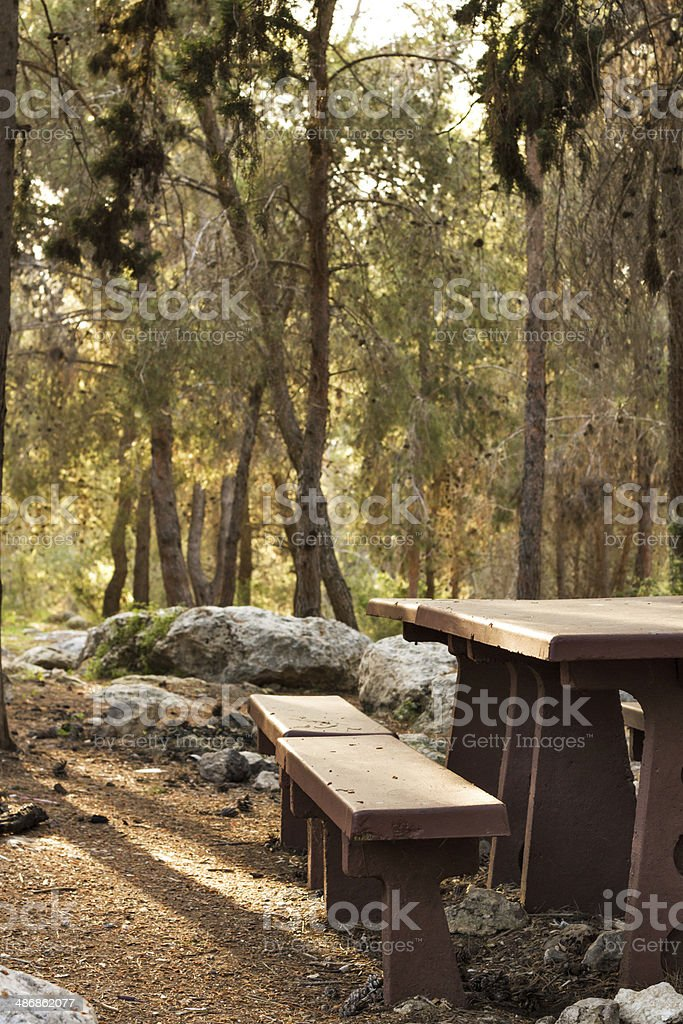 Picnic Table . royalty-free stock photo