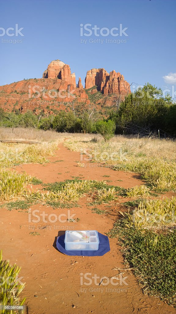 Picnic with a view of Cathedral Rock in Sedona- Vertical stock photo