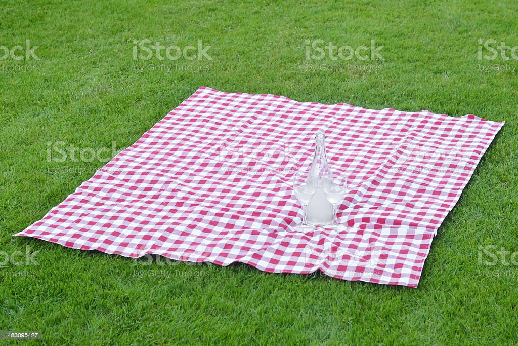 Picnic with Drinks stock photo
