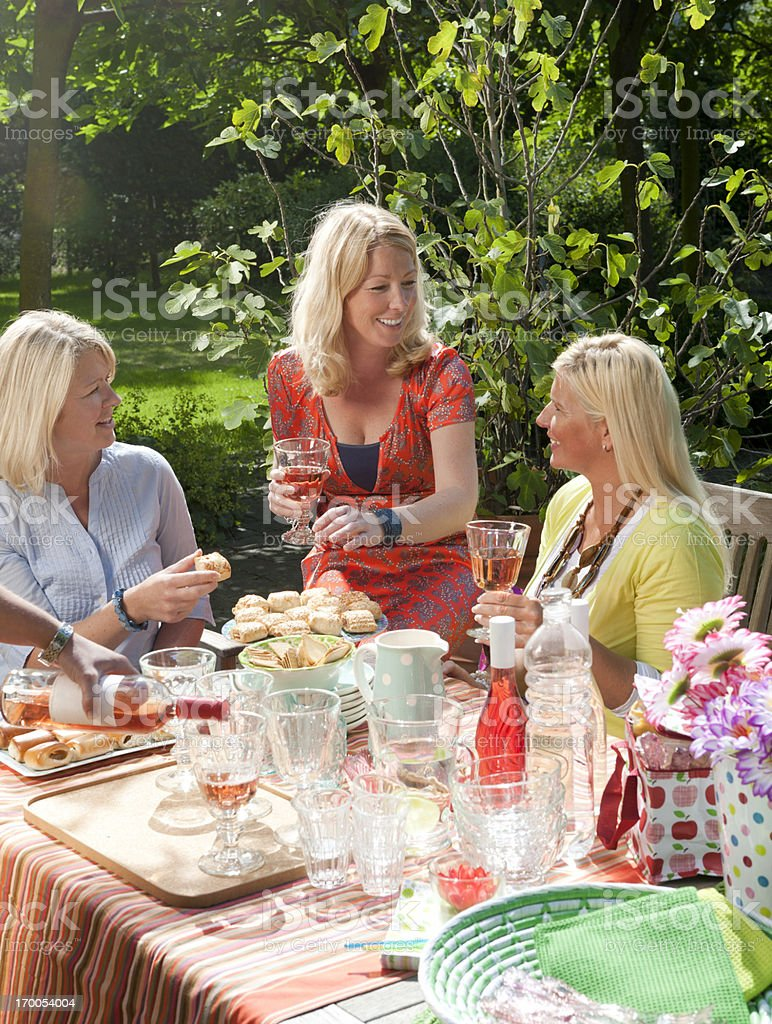 Picnic with friends stock photo