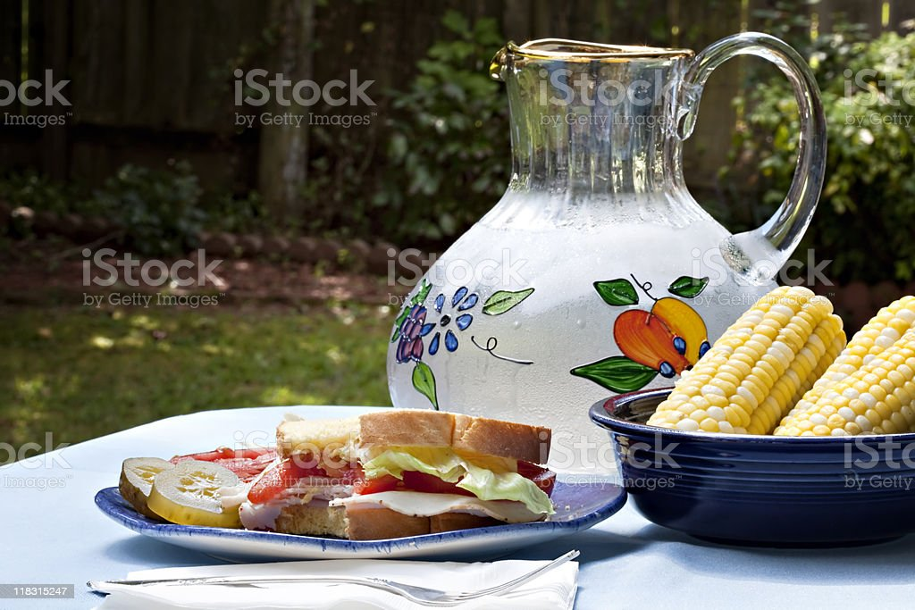 Picnic with Turkey Sandwich and a bite missing royalty-free stock photo