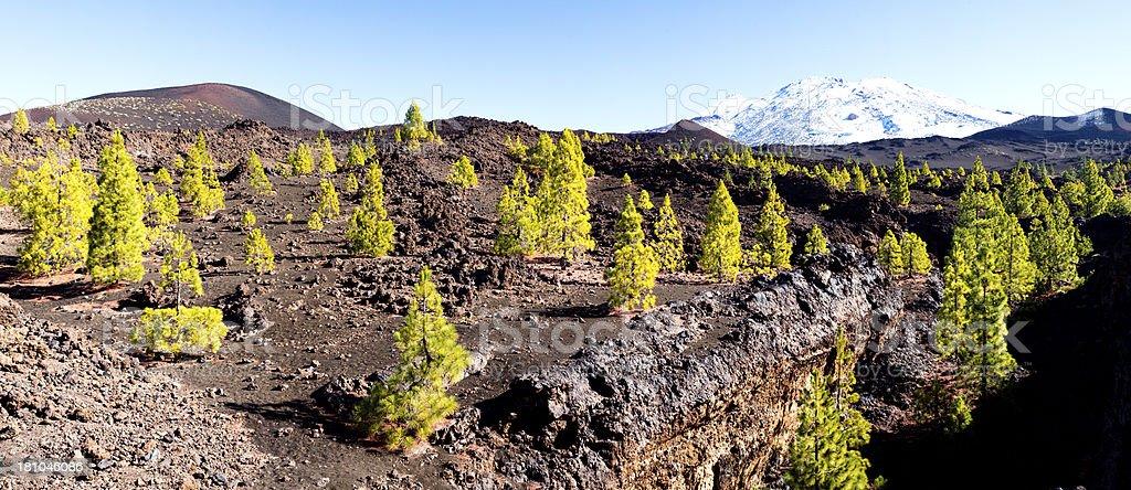 Pico de Teide royalty-free stock photo
