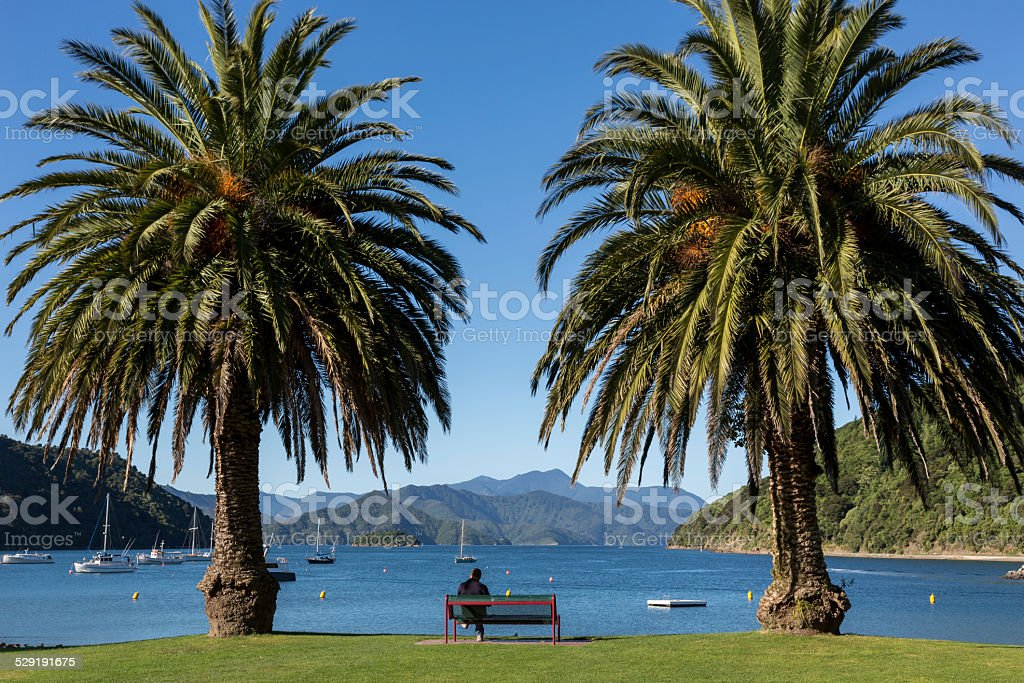 Picton Harbor and Pier, South Island, New Zealand stock photo